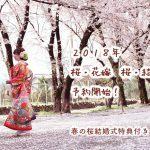 前撮り桜和装