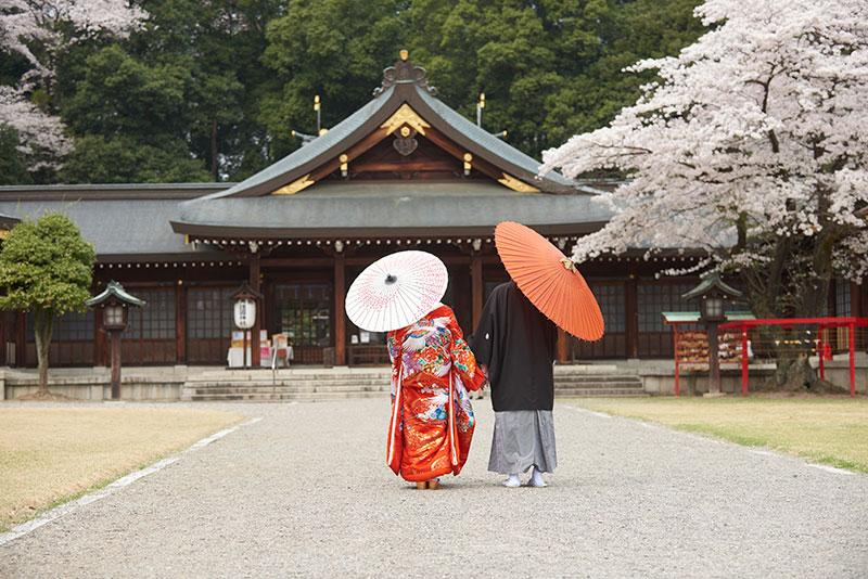 和装前撮り桜ロケーションフォト結婚式写真