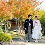 秋の紅葉和装結婚式前撮りロケーションフォト